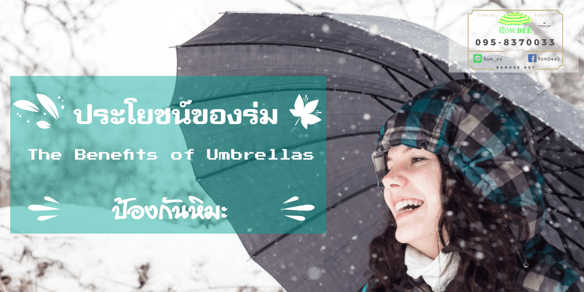 ประโยชน์ของร่ม ป้องกันหิมะ